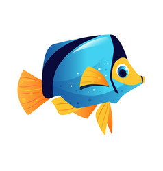 blue surgeon fish sea tropical aquarium fish vector image vector image