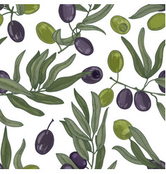 Elegant botanical seamless pattern with olive tree vector