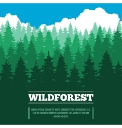 Wild landscape with fir trees coniferous forest vector image vector image