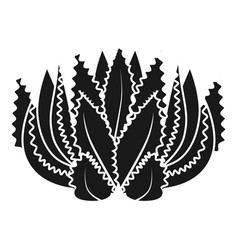 Botanical succulent icon simple style vector