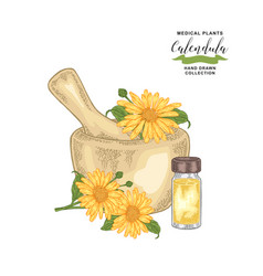 Calendula flowers with mortar and glass bottle of vector