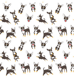Chihuahua seamless pattern vector