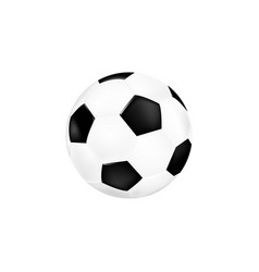 football ball for soccer 3d ball isolated vector image
