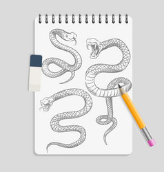 Hand drawn snakes on realisic notebook page with vector