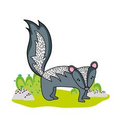 Happy skunk wild animal in the landscape vector