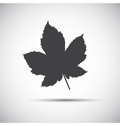 Maple leaf simple grey icon vector