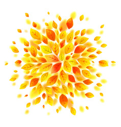 orange and yellow autumn leaves splash vector image