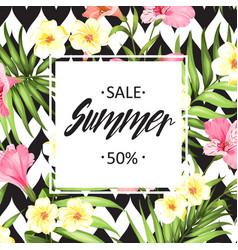 summer sale card vector image