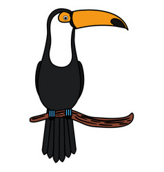 toucan in branch tropical bird icon vector image