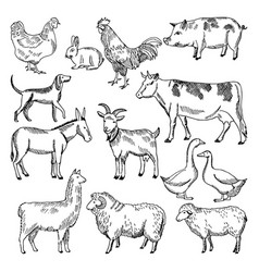 Vintage farm animals farming in hand vector