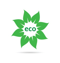 eco leaf sign vector image vector image