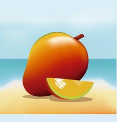 Mango fruit fresh harvest - beach background vector