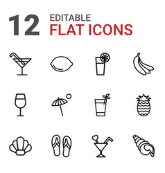 12 tropical icons vector