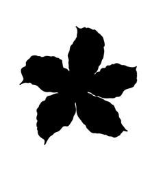 Adenium flower silhouette top view vector