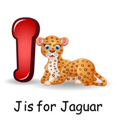 Animals alphabet j is for jaguar vector