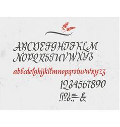 classic italic alphabet vector image