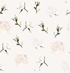 delicate pattern white roses flowers vector image