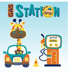 Funny giraffe on little car filling gasoline vector