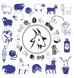 Goat and sheep drawings and icons vector
