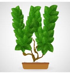 Green foliage houseplant alphabet vector image