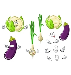 Cauliflower onion and eggplant vegetables vector image vector image