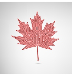 Lined Maple Leaf vector image vector image
