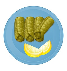 A plate with healthy foods vector image