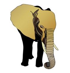 Elephant Elephantidae vector