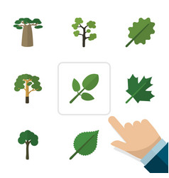 Flat icon ecology set of garden foliage wood and vector