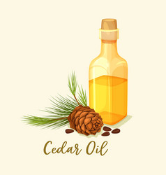 Glassware bottle with cedar oil and pine cone vector