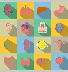 Human organs flat style icons vector image