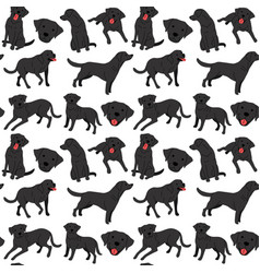 labrador seamless pattern vector image