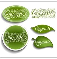 Organic Openwork inscription vector
