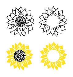 Sunflower on a white vector