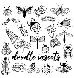 big hand drawn doodle set with insects vector image