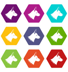 collie dog icon set color hexahedron vector image
