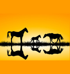 countryside family horses silhouettes in wild vector image