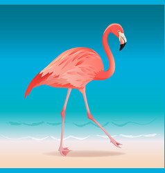 exotic pink flamingo walking on hot summer vector image