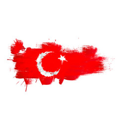 grunge map turkey with turkish flag vector image