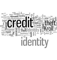 Identity theft sheild vector