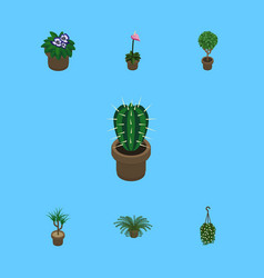 Isometric flower set of blossom grower plant and vector