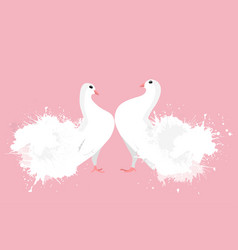 Pair of white enamored doves with watercolor vector