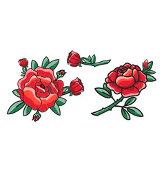 closeup of red rose on poster vector image