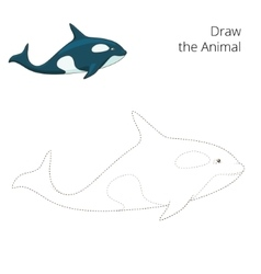 Learn to draw animal whale vector image