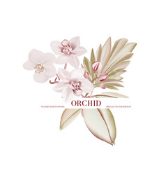 wedding orchid floral invitation tender thank you vector image