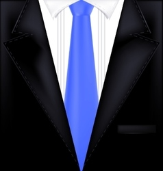 abctract black and blue suit vector image vector image