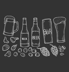 Beer bottles and glass vector