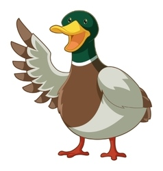 Cartoon smiling duck vector