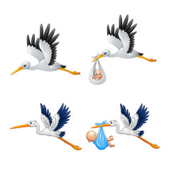 cartoon stork with bacollections vector image