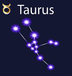 Constellation taurus with stars in night sky vector